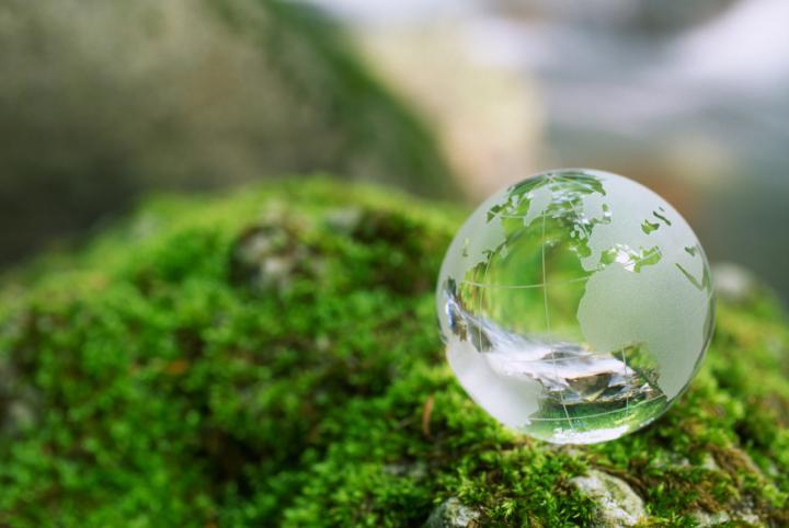 Экологическая страничка